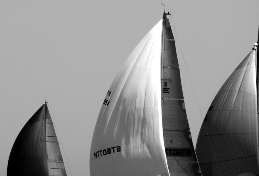 Palermo Montecarlo - la vittoria di Rambler alla regata velica - foto 01