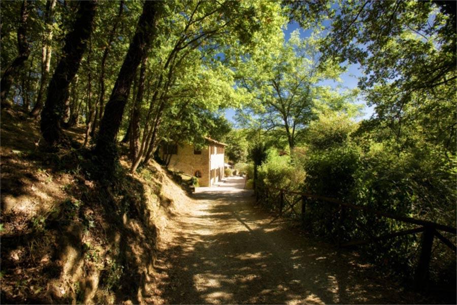 SPA in Toscana - Il Borro, vista della strada per arrivare al mulino