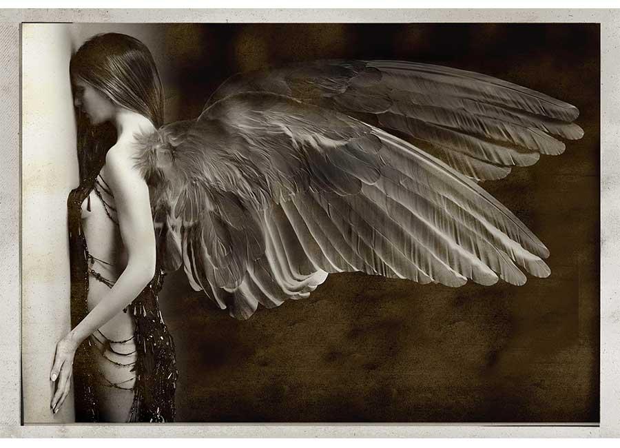 Giovanni Gastel. Quarant'anni di storia e di immagini: angeli-caduti-2015