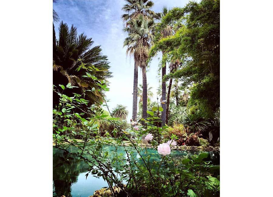 Ville di Lusso: villa tasca, passeggiando nel giardino. Lussureggiante vegetazione con fiori, palme e alberi di ogni genere