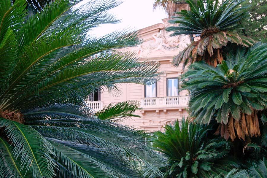 Ville di Lusso: villa tasca, scorcio delle finestre fra le palme