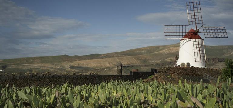 Carlo Scarpa per il Giardino-2017-Jardin de Cactus-copertina