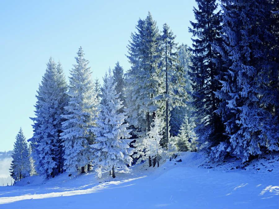 Dan Holdsworth-audemars piguet-la Vallee de Joux-inverno_paesaggio-innevato