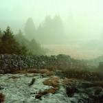 Le meraviglie della natura negli scatti di Dan Holdsworth per Audemars Piguet