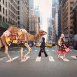 Anima Libera: la tua valigia per l'estate