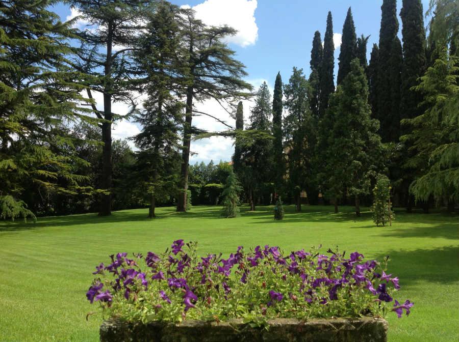 Villa dei Cedri-area verde esterna - prato, fiori e alberi