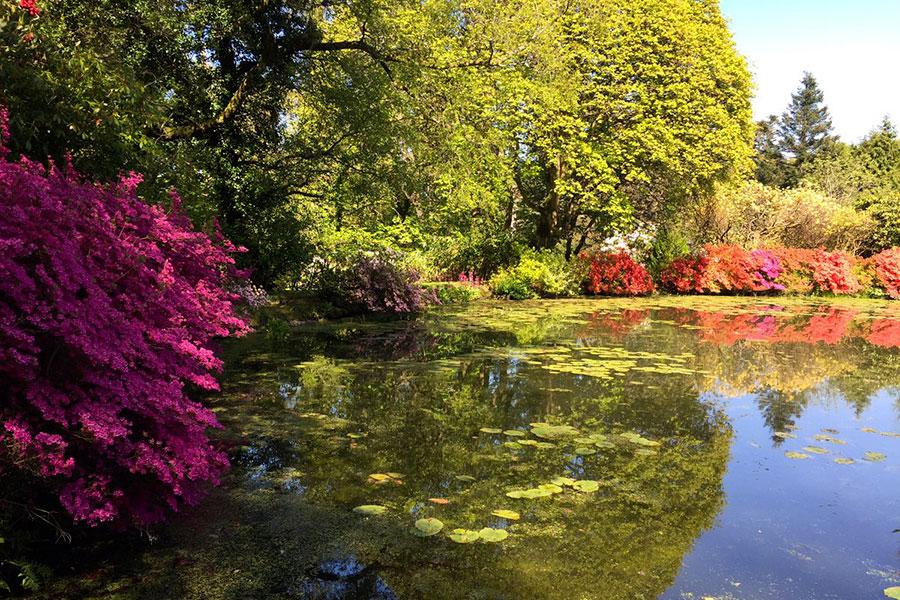 Glenapp Castle - scorcio di uno dei giardini del castello