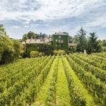 L'Albereta Relais & Châteaux: un invito nelle terre di Bacco
