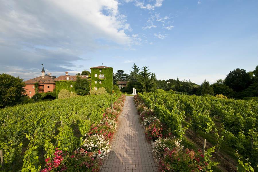 Albereta Relais & Châteaux - Veduta su Vigna Leone