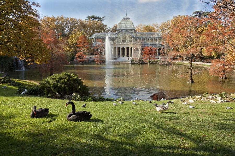 The Westin Palace Hotel, Madrid: Parco del Retiro