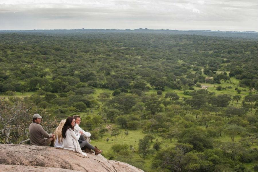 Tanzania - Mwiba Lodge Hotel: scorcio del parco naturalistico