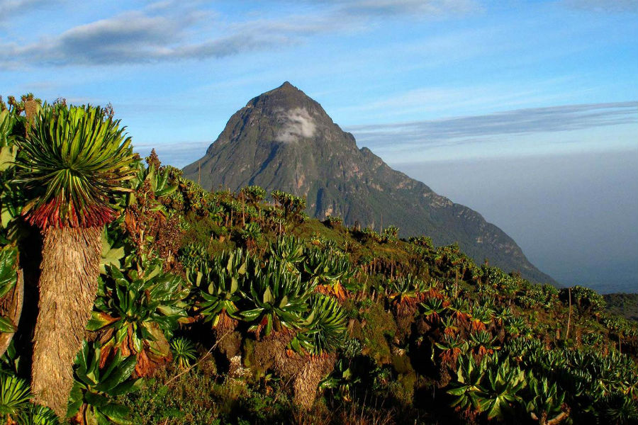 Four Seasons Private Jet - Mikeno, vulcano in Rwanda