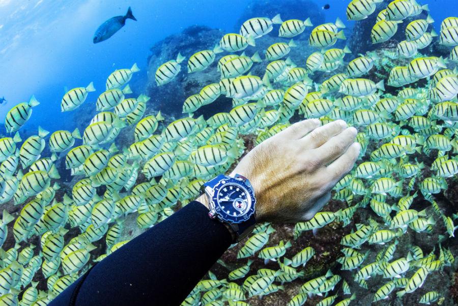 Il Diver Deep Dive di Ulysse Nardin al polso di Frederic Buyle. Strumento di immersione professionale resistente, fra l'altro fino, fino a una pressione di 100 atmosfere.