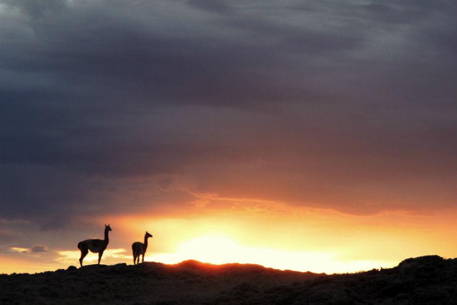 Relais & Chateaux - il resort Eolo per scoprire la Patagonia: nell'immagine, attività di escursionismo al tramonto