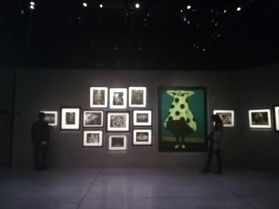 Allestimento mostra fotografica di Sarah Moon a Milano