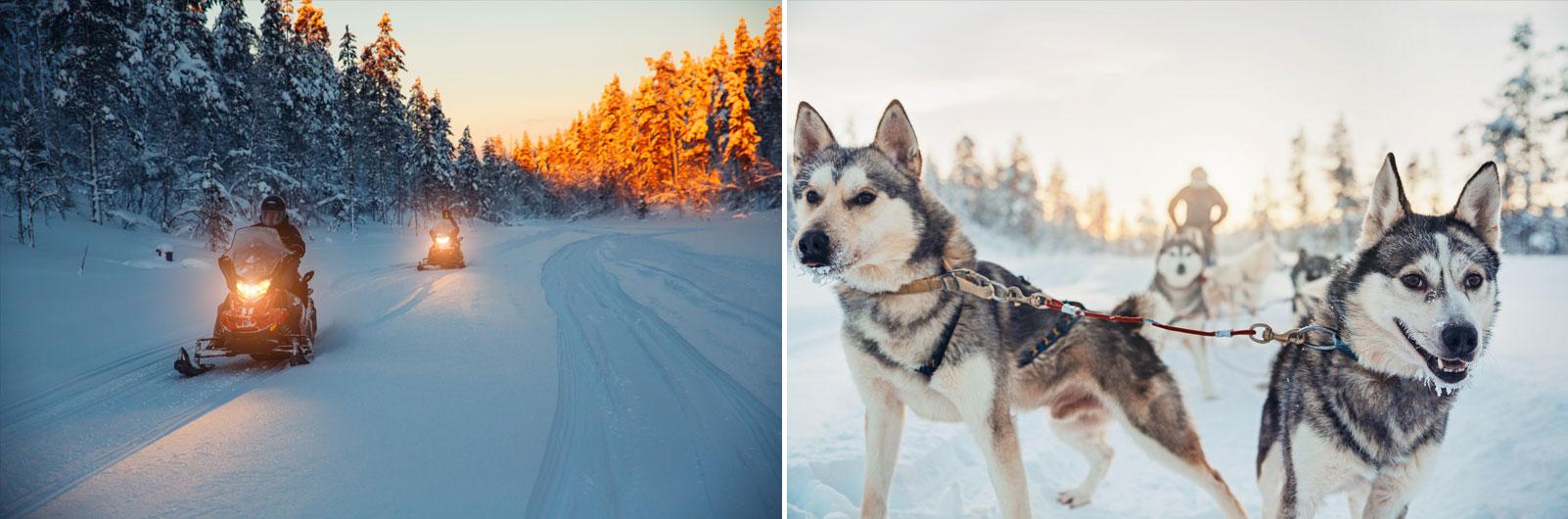 Aurora Boreale finlandia Kakslauttanen Snowmobile Husky Safari