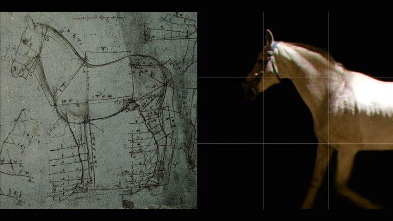 Milano celebra i 500 anni di Leonardo
