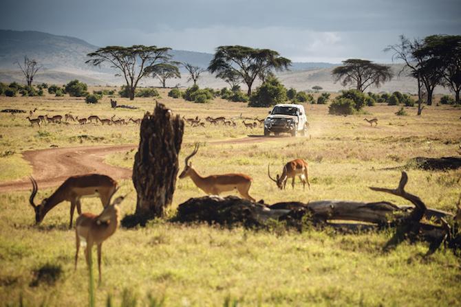 Land Rover Defender nella Riserva del Borana