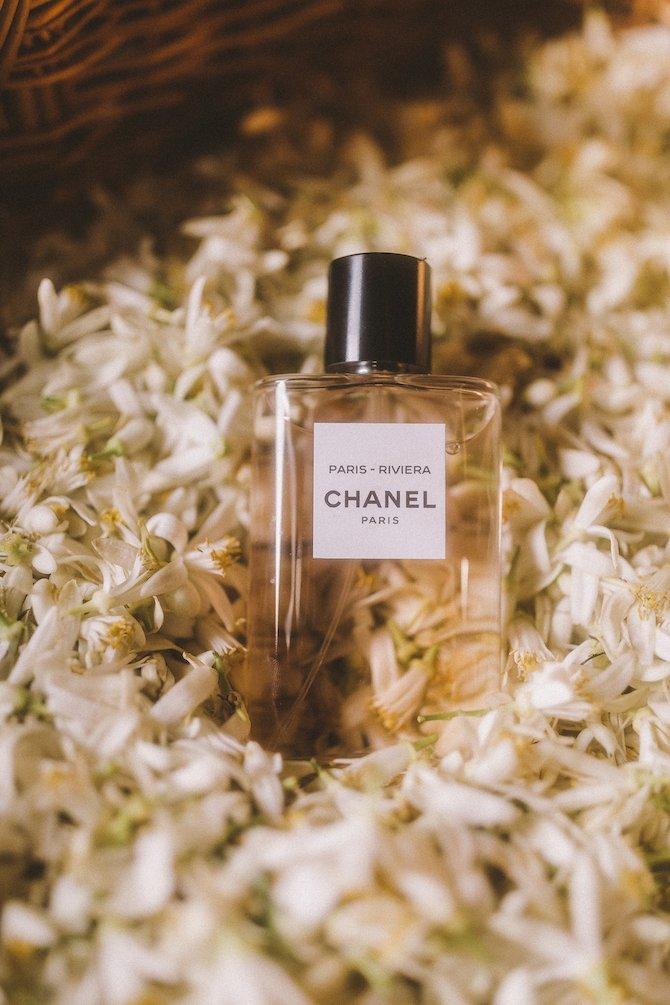 Les eaux de Chanel_Neroli_Credits Chanel