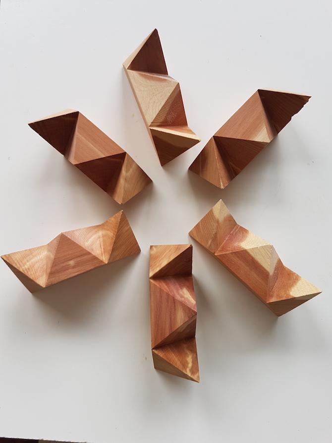 il dodecaedro di Leonardo