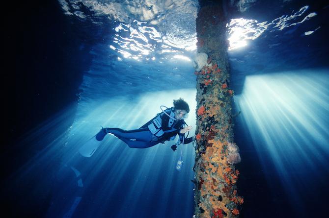 Mission Blue - Sylvia Earle, testimonial Rolex - ©David Doubilet