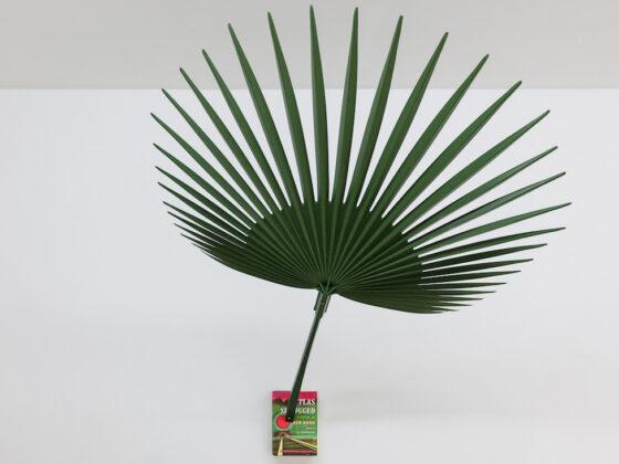 Indagare il tempo con la mostra Past / Present alla Galleria Michela Negrini di Lugano