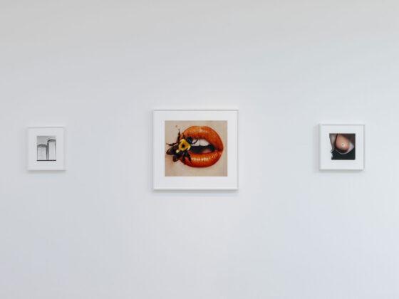 Cardi Gallery Milano presenta la mostra IRVING PENN